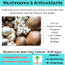 Mushrooms and antioxident properties