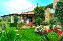 Kavousi Resort Falassarna Creta