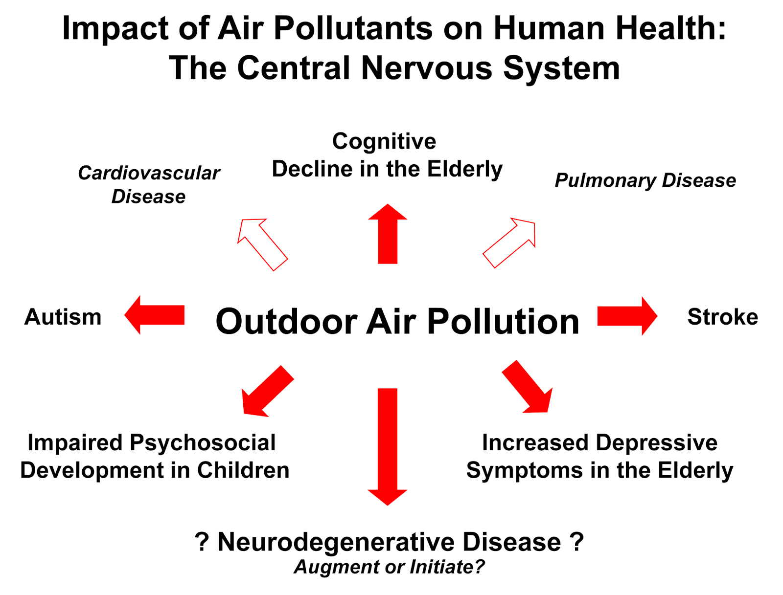 Smog pollution as a consequence of human behavior