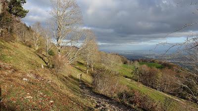 Weg zwischen Stierenberg und Hofbergli