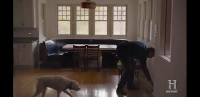 Marceau Dog