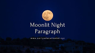 A Moonlit Night Paragraph - Early Education