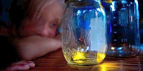 kunang-kunang dalam bir, sebuah cerpen karya Djenar Maesa Ayu