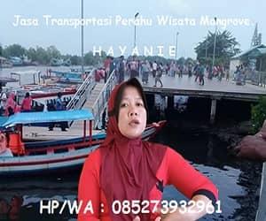 Jasa Transportasi Wisata Mangrove