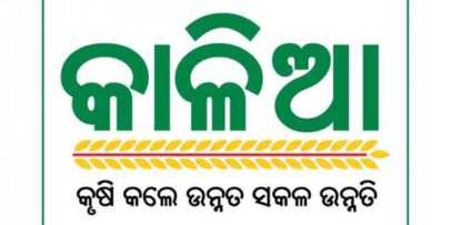 Kalia Yojana New Update For All Farmers, Good News Odisha Govt Decided To Pay 3.2 Million Kalia Yojana Beneficiary Farmars.Here The Full Report About Kalia Yojana New Update