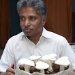 Indian Agriculture: Scope of mushroom production yet to be mushroomed fully