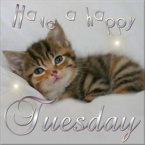 Have A Happy Tuesday Images 2018