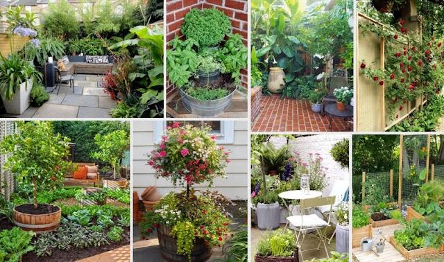 50+ Ιδέες για μικρούς Κήπους-Αυλές