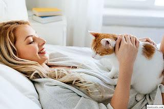 Kucing Sebagai Haiwan Terapi Minda