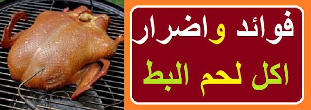 """""""اكل لحم البط"""" """"أكل لحم البط للحامل"""" """"أكل لحم البط السيستاني"""" """"اكل البط ايه"""" """"اكل لحم البط للحامل"""" """"اكل البط الكبير"""" """"اضرار اكل لحم البط"""" """"اكل البط البلدي"""" """"اكل البط"""""""