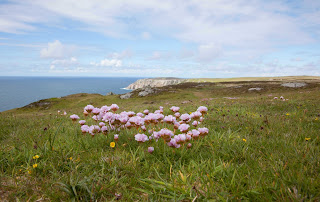 Beautiful Lundy