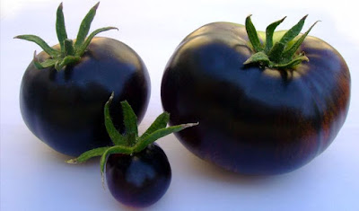 Colors of Tomatoes - Black Tomato