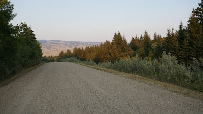 Cypress Hills, sign, landscape, plant