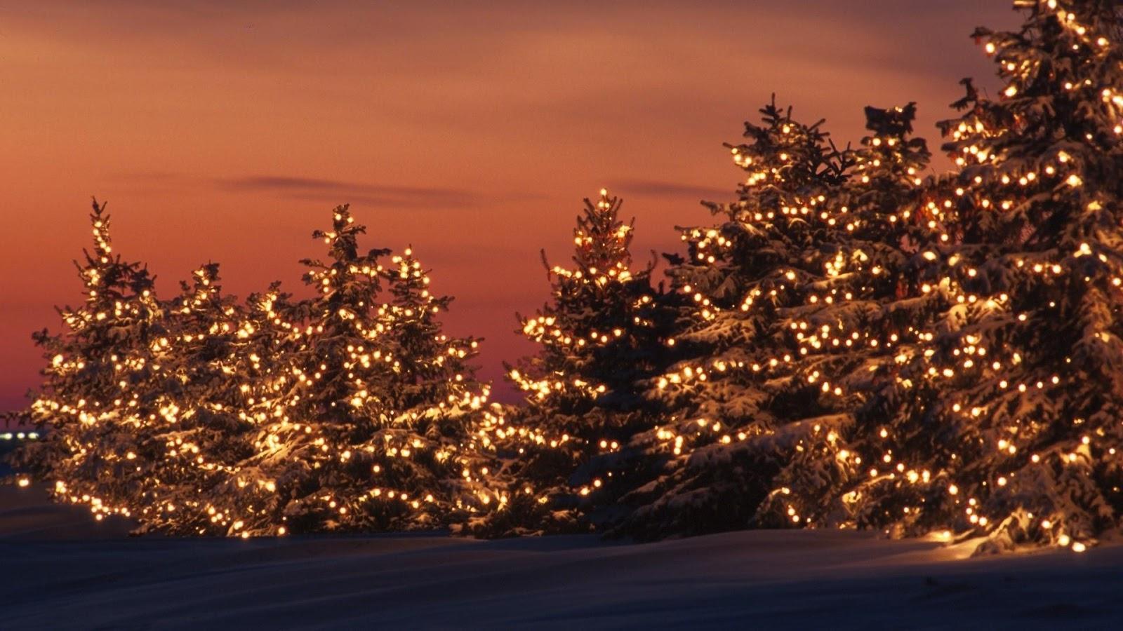 merry christmas lights hd