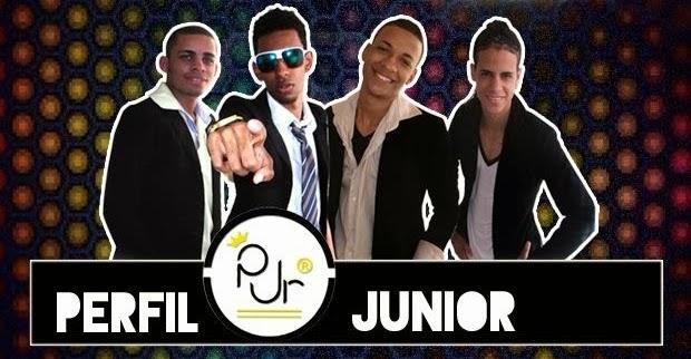 Grupo Perfil Junior – Quero lhe falar (2014)
