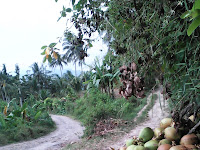 Berkunjung  di  Desa Pakis Kecamatan Sale