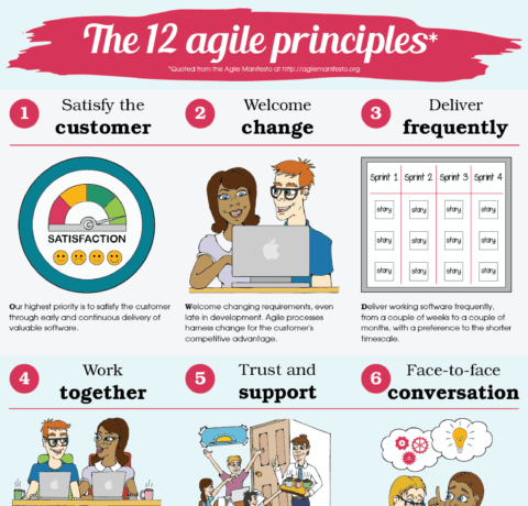 The 12 Agile Principles #infographic