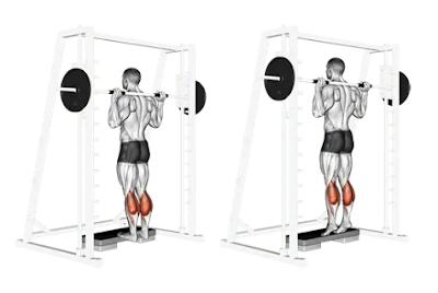 Calf Exercises - Smith machine standing calf raise