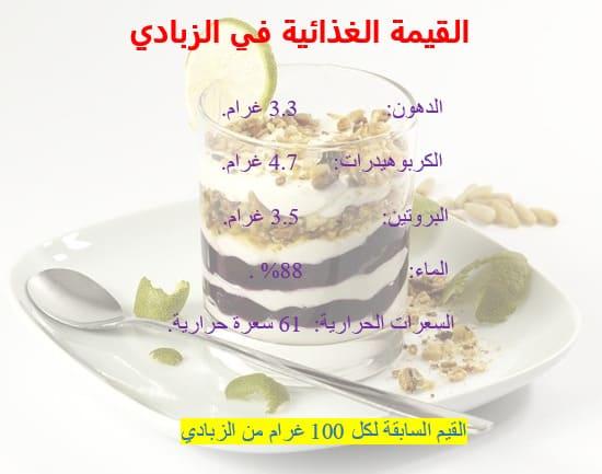 القيمة الغذائية في الزبادي في الكيتو