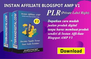 Instan Affiliate Blogspot AMP V1 PLR