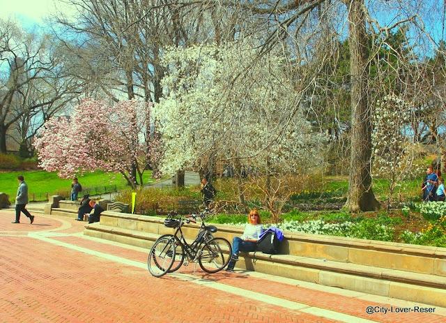 Central Park in april, New York