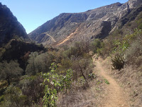Heading south on Fish Canyon Trail toward Vulcan Materials quarry, Angeles National Forest