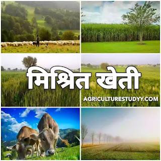 मिश्रित खेती (mixed farming in hindi) क्या है इसके के लाभ एवं सिद्धांत, मिश्रित खेती किसे कहते है, मिश्रित खेती की परिभाषा, मिश्रित खेती के लाभ, दोष,