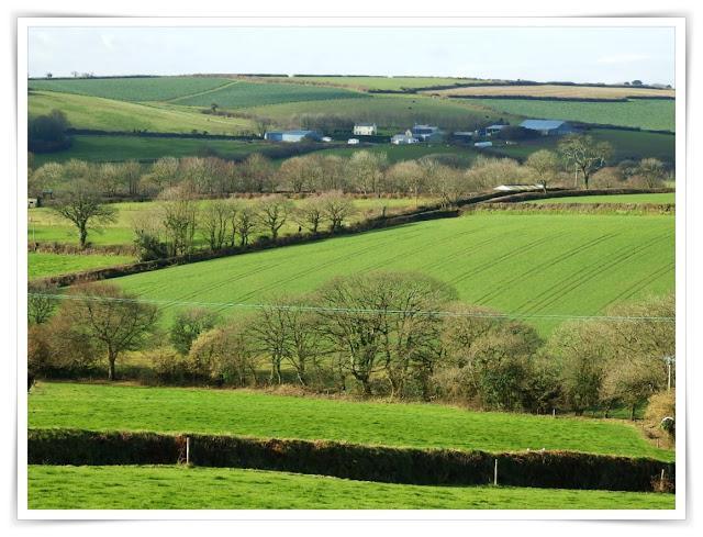 Green fields, St.Austell, Cornwall