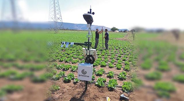 Αργολίδα: Θετικά τα αποτελέσματα της ευφυούς γεωργίας στον κάμπο των Ιρίων