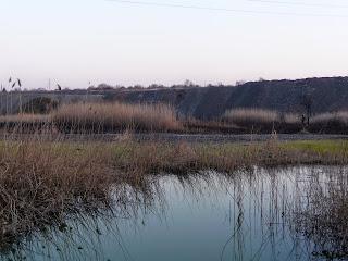 Пруд на реке Сенной