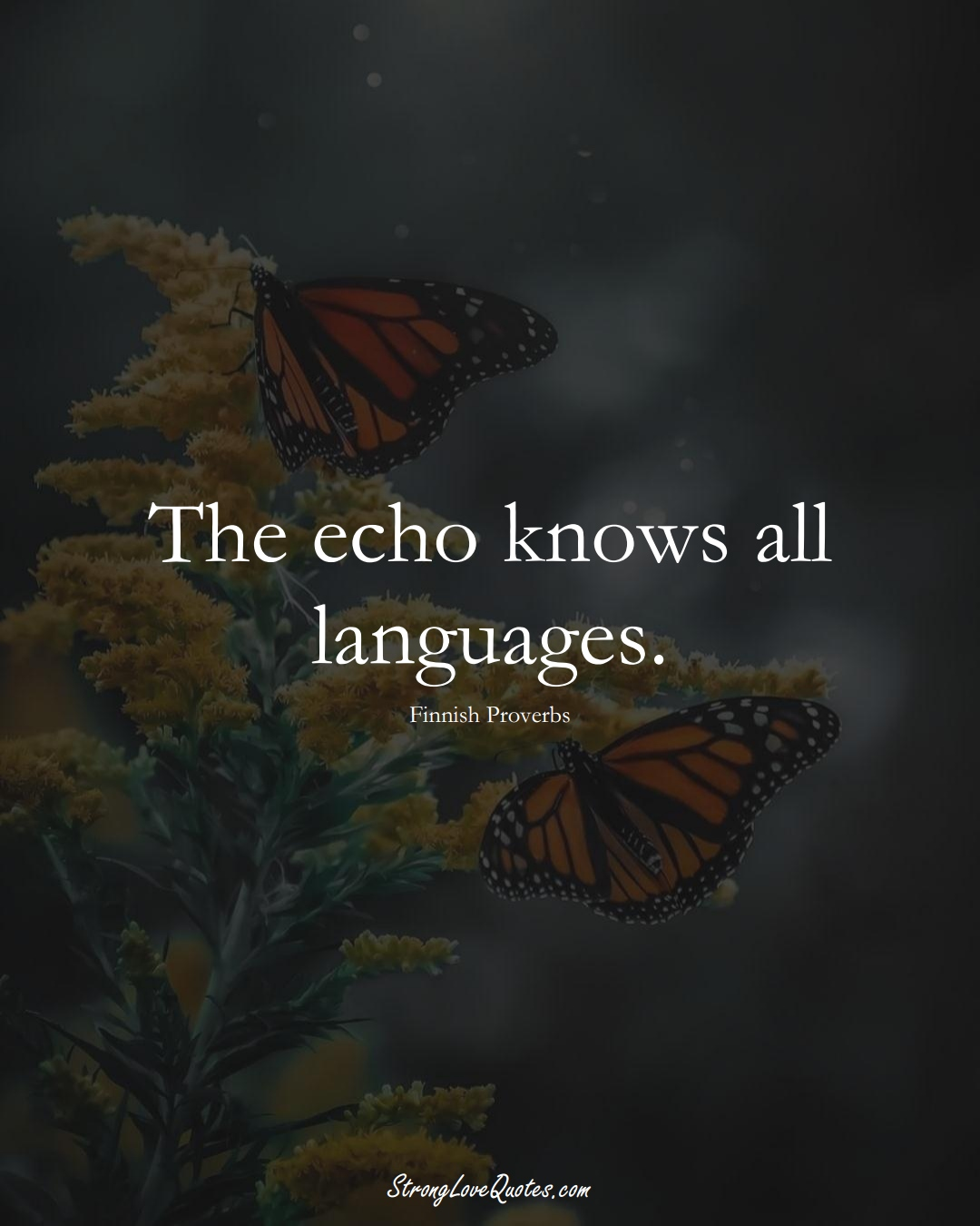 The echo knows all languages. (Finnish Sayings);  #EuropeanSayings