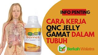 Qnc jelly gamat merupakan produk multikhasiat yang sudah teruji dan bersertifikat BPOM Manfaat, Khasiat Dan Cara Pakai Qnc Jelly Gamat