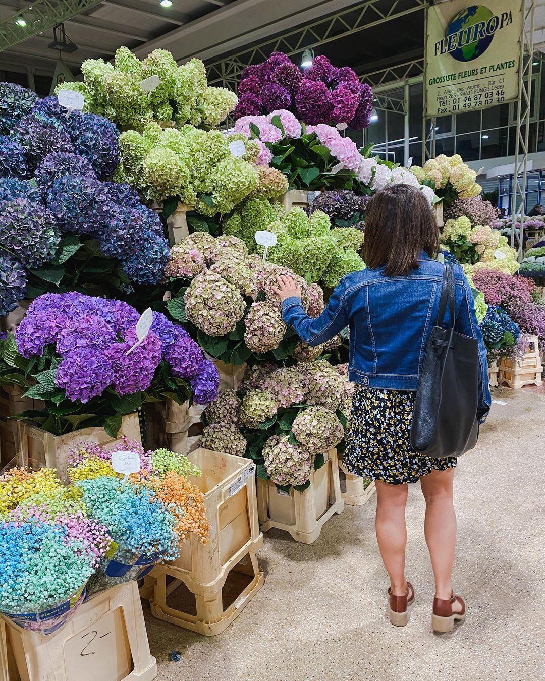 Pasar Bunga terbesar di Paris Rungis