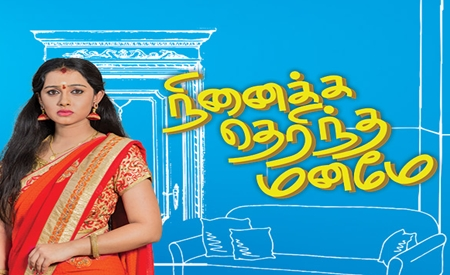 Ninaika Therintha Maname 13-04-2018 Vijay Tv Serial