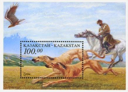 казахская овчарка тазы