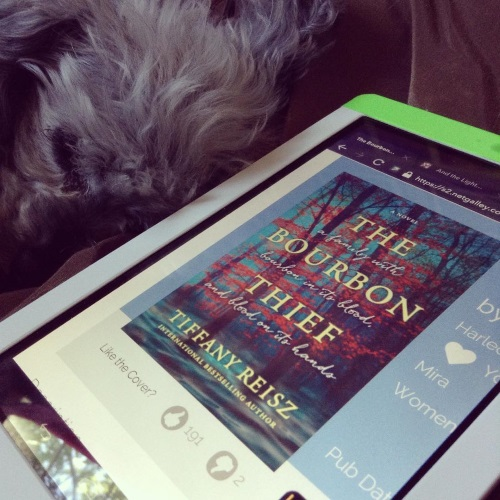 A sleek grey poodle, Murchie, lies curled up just behind a white Kobo with the NetGalley page for The Bourbon Thief on its screen. The page is zoomed in on the book's cover, which features a forest of thin, red-leafed trees against a misty blue-green background.