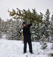 Tahoe Christmas Tree Cutting Permits selling soon.