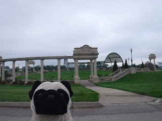 a white pavilion with many columns is visible behind a plush pug