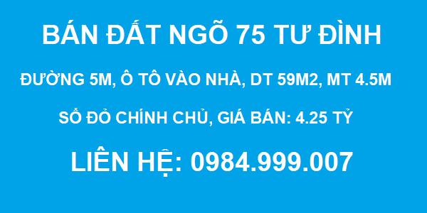 Bán đất ngõ 75 Tư Đình, đường 5m, DT 59m2, MT 4.5m, SĐCC, giá 4.25 tỷ, 2020