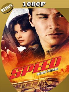 Maxima Velocidad (1994) Latino BDREMUX Remasterizado [Google Drive] Onix