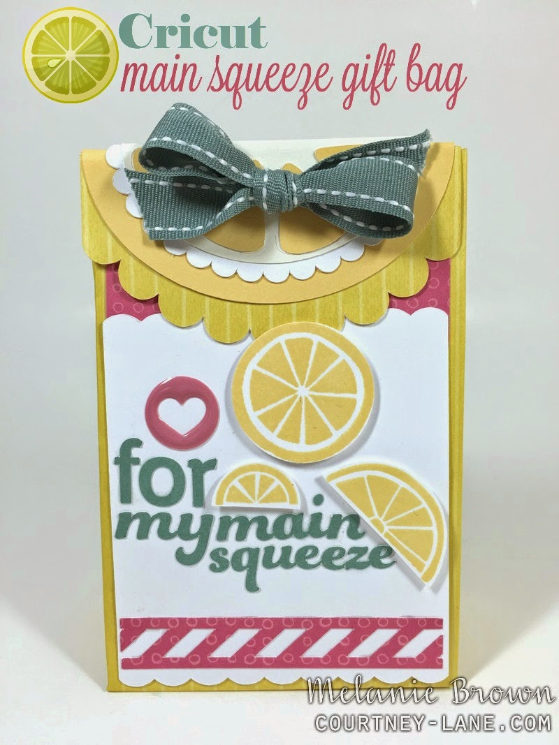 Cricut Main Squeeze Gift Bag