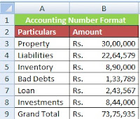 How to Use Accounting Number Format in Excel in Hindi