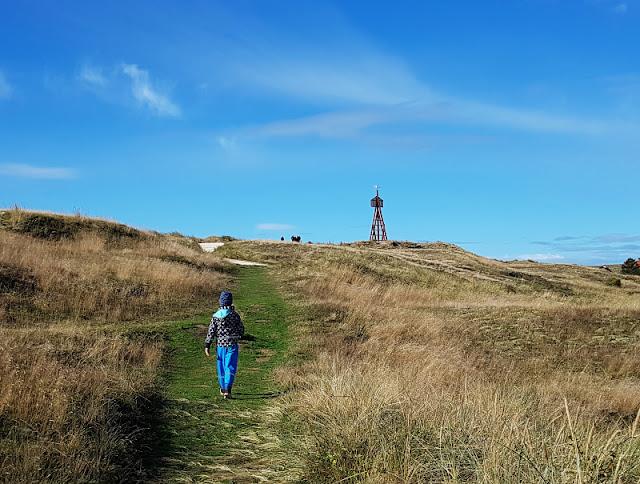 Urlaub auf Fanø mit Kindern: 12 Ausflugstipps für das wunderschöne Sønderho. Bei einem Ausflug nach Sönderho solltet Ihr zum Seezeichen auf der Düne hinauf steigen.