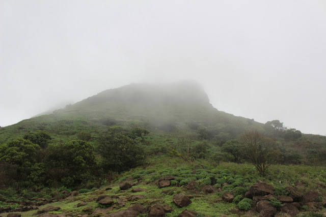 HARISHCHANDRAGAD FORT, MONSOON VIEW AT HARISHCHANDRAGAD