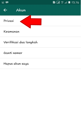 Privasi Whatsapp