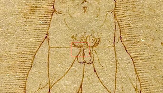 Hombre de Vitruvio, Da Vinci, Leonardo Da Vinci