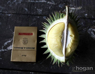 Smallest Durian in the world