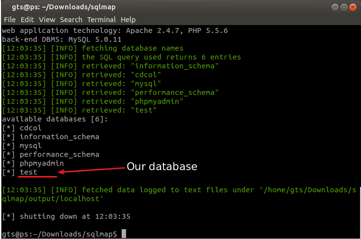 SQL injection sqlmap database discovery