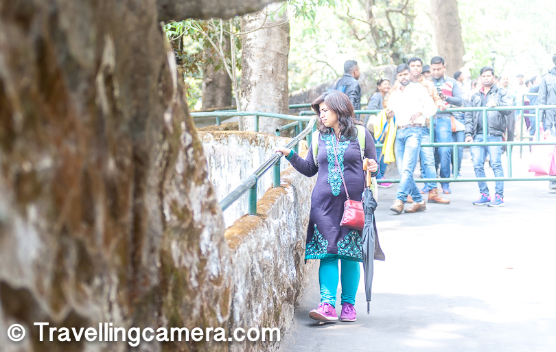 Also known as the Padmaja Naidu Himalayan Zoological Park, the Darjeeling zoo is one of the most popular tourist places in Darjeeling. According to a news report during the Darjeeling bandh in June this year, around 5000 tourists visit the zoo every year. It houses exotic animals that you will probably never get to see otherwise. Moreover, in the Darjeeling zoo, these animals are much easier to see, unlike the Gangtok zoo, which is larger and keeps the animals in a semi-natural habitat. I tend to side with the Gangtok zoo on this, but the truth is that I haven't really seen that place.