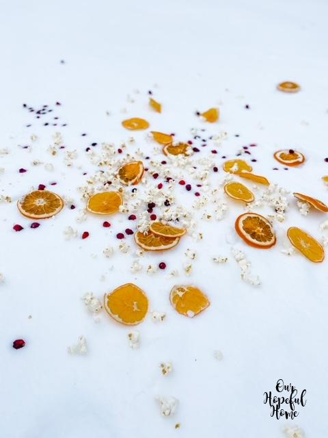 dried fruit snowy ground popcorn